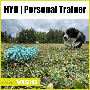 HYB | Personal Trainer